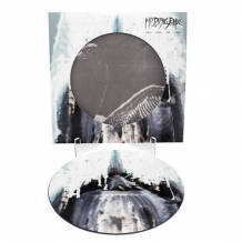 Turn Loose the Swans (picture disc)
